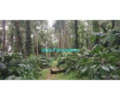 10 Acre Coffee Land for Sale Near Belur