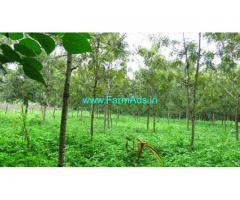 8.5 Acre Farm Land for Sale Near Kodaikanal