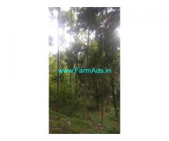 10 Acre Agriculture Land for Sale Near Attappadi
