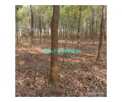 3 Acres Red sandalwood farm land for Sale near Mancherial