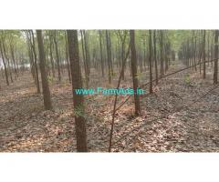 3 Acres Red sandalwood farm land for Sale near Mancherial
