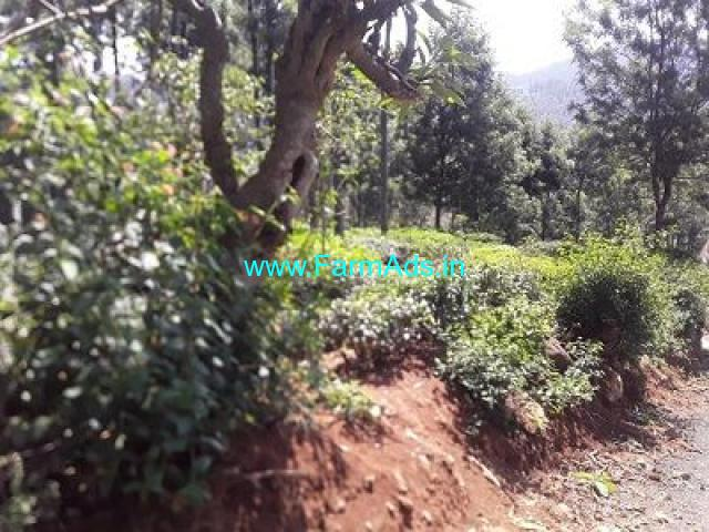 6 Cent Farm Land for Sale Near Kotagiri