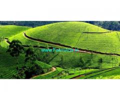 39 Acre Tea Estate for Sale Near Kotagiri