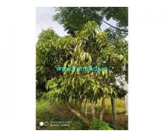 3 Acre Farm Land for Sale Near Yennegere