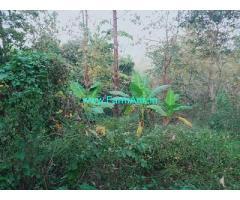 50 Cents Farm Land for Sale Near Thodupuzha