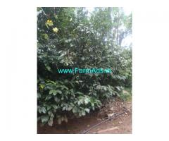 28 Acre Agriculture Land for Sale Near Attappadi