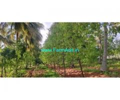 5.2 Acre Agriculture Land for Sale Near Masadi
