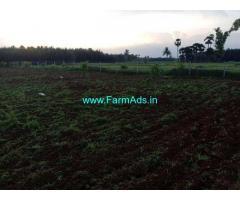 6.5 Acre Farm Land for Sale Near Makavarapalem,Narasipatnam Road