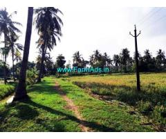 2.5 Acre Agriculture Land For Sale In Kalavacherla