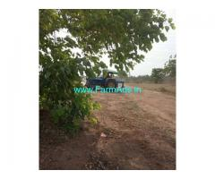 1.5 Acre Farm Land for Sale Near Aleru