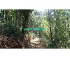 22 Acre Coffee Land for Sale Near Chikmagalur