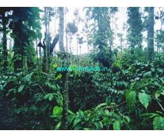 4 Acre Coffee Land for Sale Near Sakleshpur