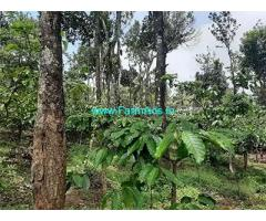 1 Acre Farm Land for Sale Near Kattikkulam