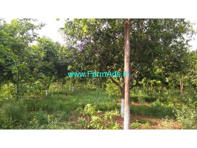 12 Acre Organic Farm Land for Sale Near Valigonda