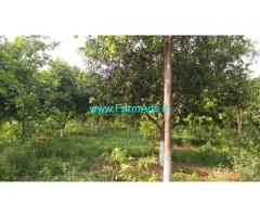 12 Acre Organic Farm Land for Sale Near Valigonda