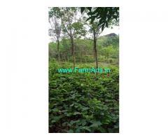8.80 Acre Farm Land for Sale Near Moodambail