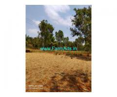 4 Acre Farm Land for Sale Near Hadli
