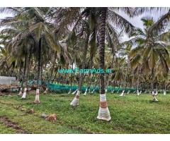 3267 Sq. ft Agriculture Land For Sale In Channapatna