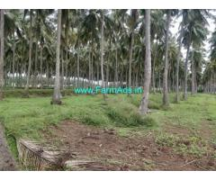 31.7 Acres Agriculture Land For Sale In Kinathukadavu