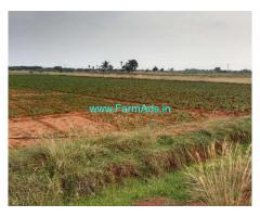 8 Acres Farm Land For Sale In Dharmathupatti