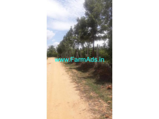 2 Acre Farm Land for Sale Near Doddabelavangala