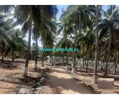 20 Acre Farm Land for Sale Near Udumalaipettai