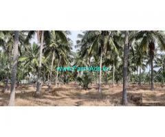 5 Acre Farm Land for Sale Near Devanallur