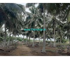 2.60 Acre Farm Land for Sale Near Kongalnagaram