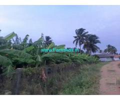 4 Acre Farm Land for Sale Near Udumalaipettai