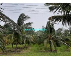 2 Acre Farm Land for Sale Near Dharapuram