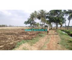 1.32 Acre Agriculture Land for Sale Near Rayavaram