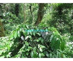 20 Acre Coffee Land for Sale Near Kodaikanal
