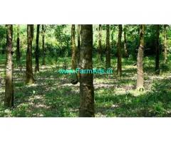 400 Acre Farm Land for Sale Near Pathanamthitta