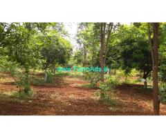 12 Acres Organic Farm Land for Sale near Bhongir