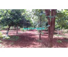 12 Acres Organic Farm Land for Sale near Bhongir
