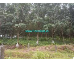 4 Acres Rubber Estate for Sale near Karkala - Udupi