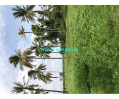Selling 3 hectares our agriculture land at Gauribidnur