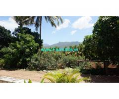 2.79 acre total farm land for sale with  coconut trees, mango trees