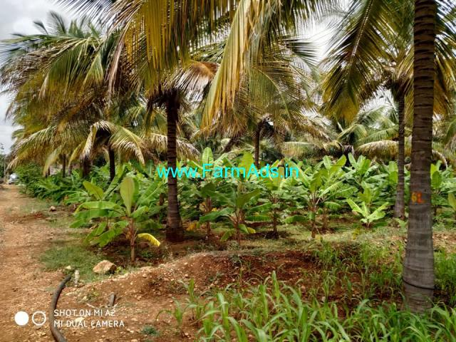 2.13 Acres Coconut farm Land for sale at Chikkanayakanahalli