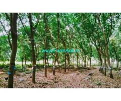 15 Acre Farm Land for Sale Near Karkala
