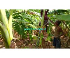1.75 acre farm land for sale gowribidnur nagasandra village