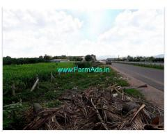 23 Cents Agriculture Land For Sale In Ankireddy Palem