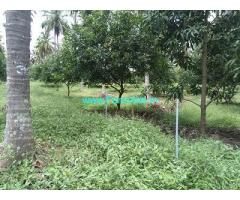 1 Acre Farm Land for Sale Near Palakkad