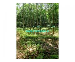 7 Acre Farm Land for Sale Near Vithura