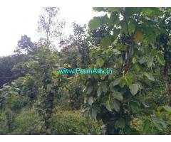 1 Acre Farm Land for Sale Near Pulikkathotty