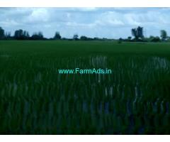 12 Acre Farm Land for Sale Near Karimnagar