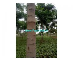 6 Acre Land for Sale Near Anantapur