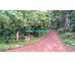 37 Cents Farm Land for Sale Near Sullia