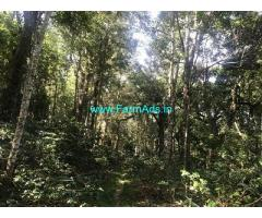 54 Acre Farm Land for Sale Near Chikmagalur