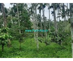 11 Acre Farm Land for Sale Near Pulpally